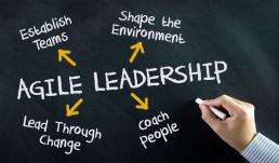 remote agile leadership