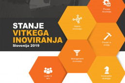 state of Lean Innovation Slovenia 2019